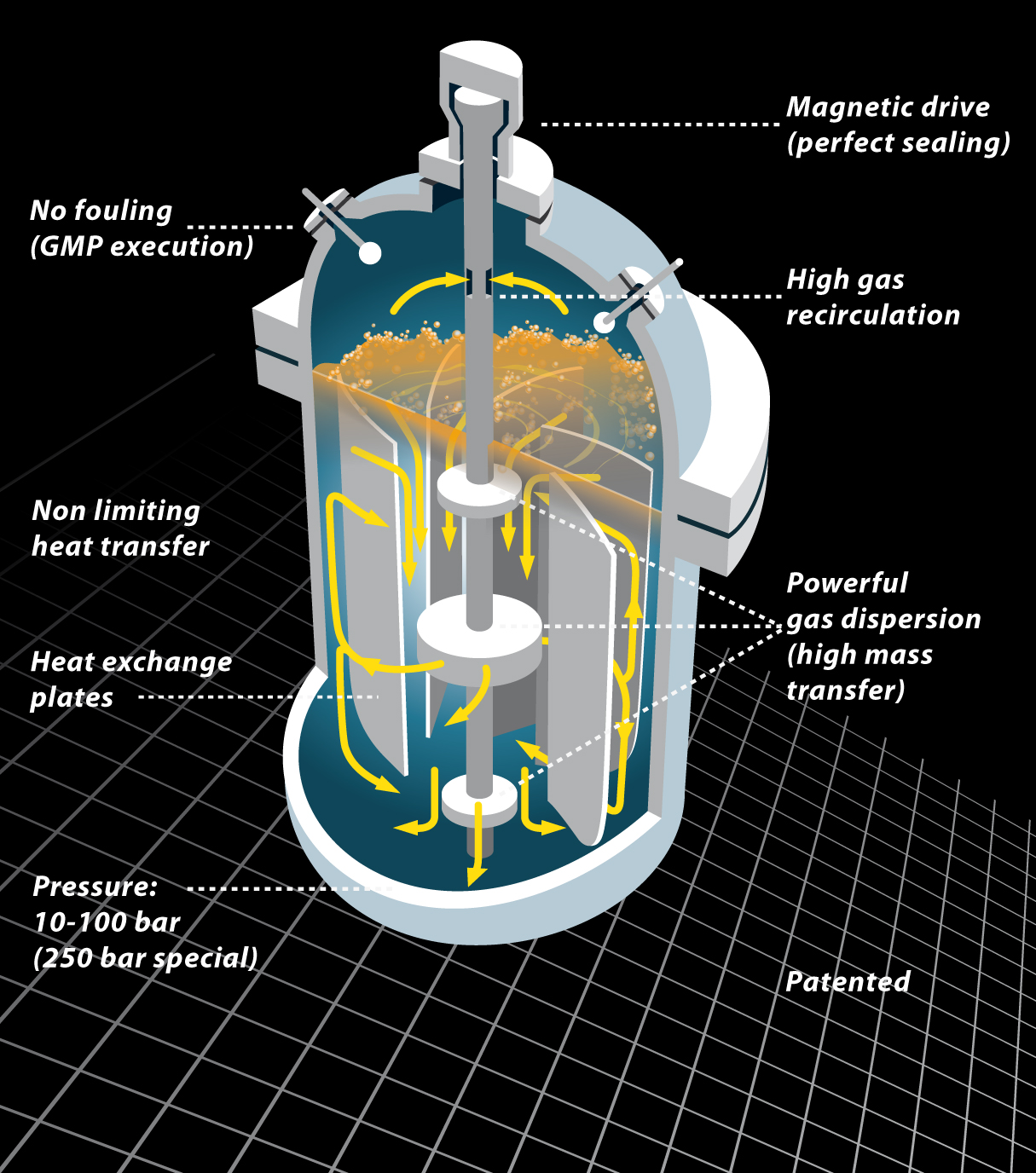 biazzi's gas/liquid reactor